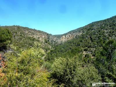 Cebreros-La Merina-Río Alberche;ruidera valle de pineta picos de urbion cabo de peñas